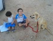 כלב חברו הטוב ביותר של... התלמיד