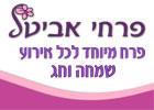 avital-logo